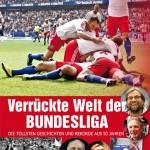 Bundesliga, 455 Seiten, Design